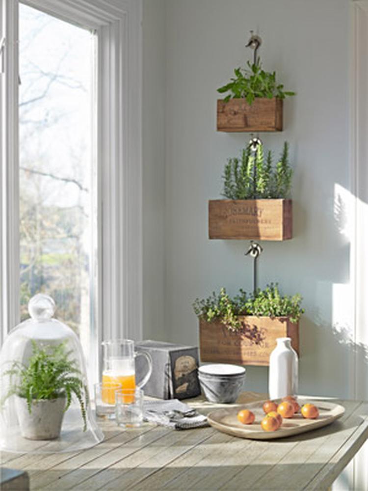 Kräutergarten Für Die Küche Oder Ein Anders Zimmer. Bringt Sofort Natur Und  Farbe In Die