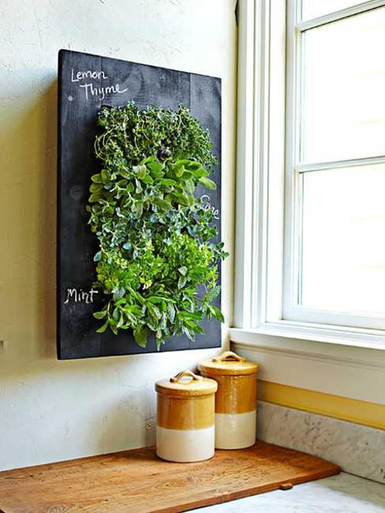 Kräuterbeet Küche vertikaler kräutergarten in der küche foto veröffentlicht